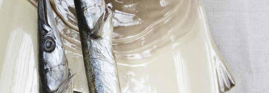 grillede-hornfisk-citronsmør
